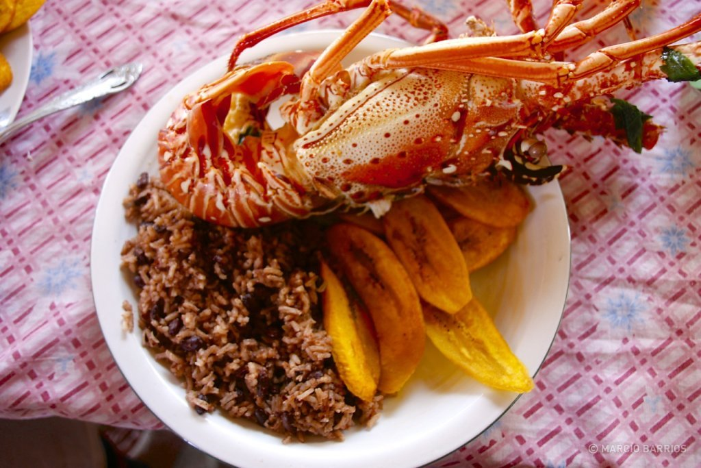A fresh lobster with red beans and rice, and tajadas
