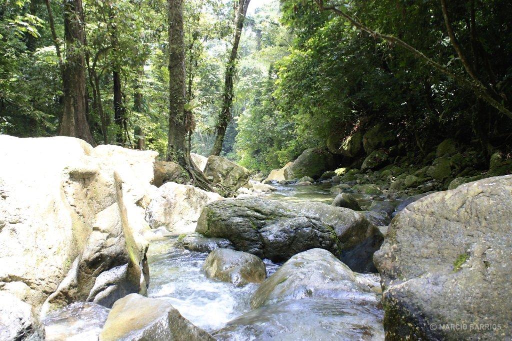 Zacate river