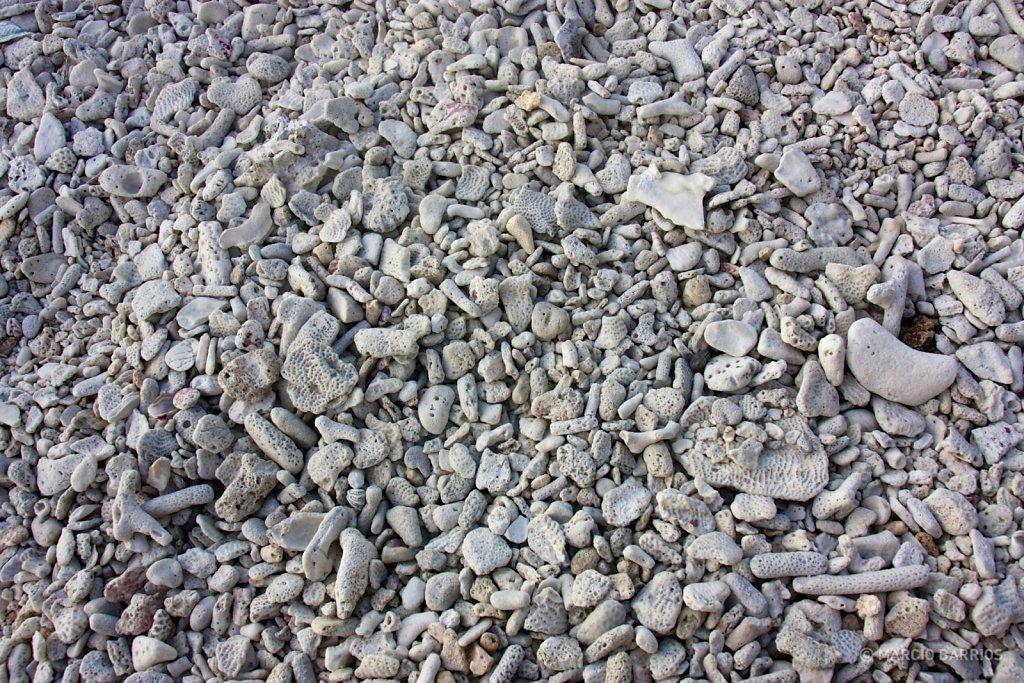 Utila is plenty of coral stones