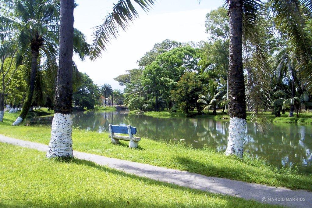 Estero, La Ceiba