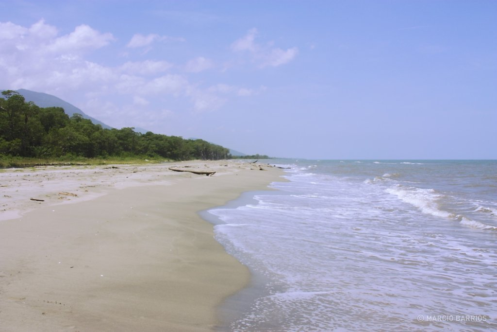 Unspoiled Caribbean beach close to Cacao Lagoon
